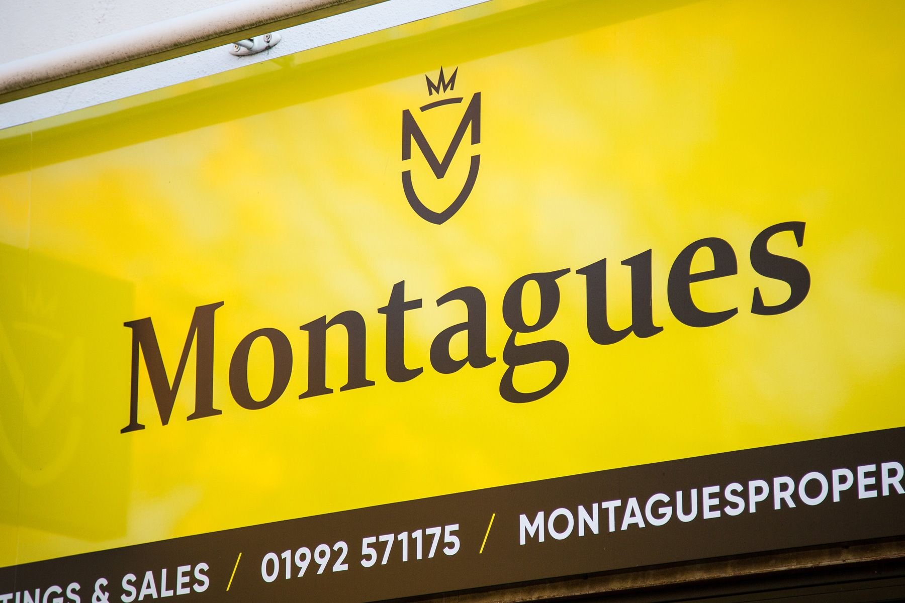 Montagues / Lettings & Sales in the heart of the Royal Forest